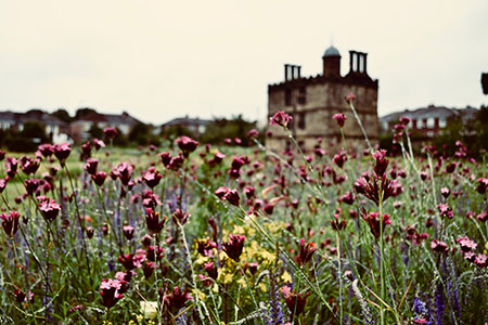 The Tudor Turret House sits amongst an array of pink purple and yellow wildflower meadows