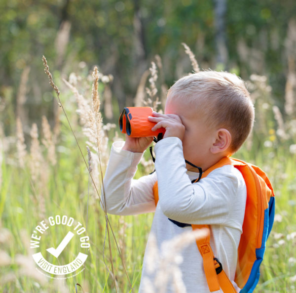 Child bird watching in meadow